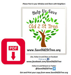 Print Your Own SaveOld2StTree.org Window Poster