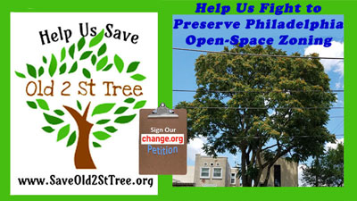 https://www.change.org/p/councilman-mark-squilla-save-old-2-st-tree