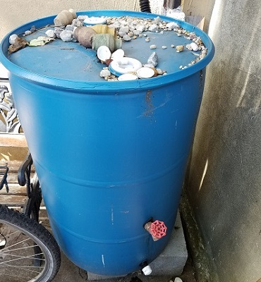 Philly Water Dept and Rain Barrels for your small Garden